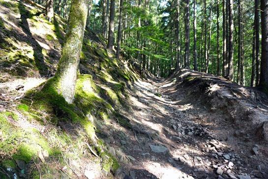 Hohlweg bei Mulartshütte, Roetgen