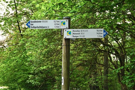 Wegkreuzung Eifelsteig Roetgen/Eifel